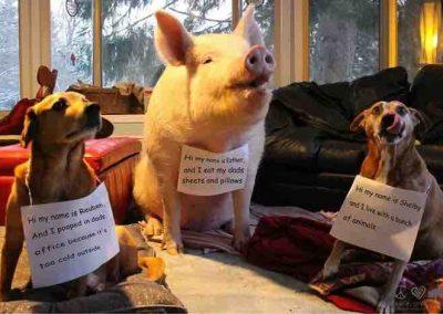 Esther, Reuben & Shelby