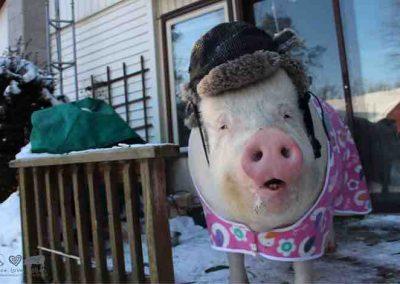 Fashionably Warm!