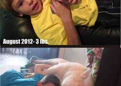 From Piglet to Pig