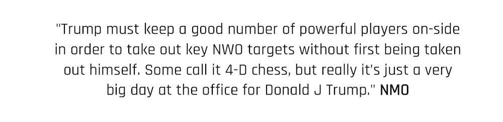 """""""Trump must keep a good number of powerful players on-side in order to take out other key players and NWO targets without first being taken out himself. Some call it 4-D chess, but really it's just a very big day at the office for Donald J Trump."""" New Moral Order Quote"""